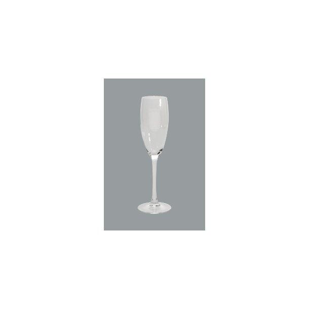 Cabernet champagneglas  16,0 cl